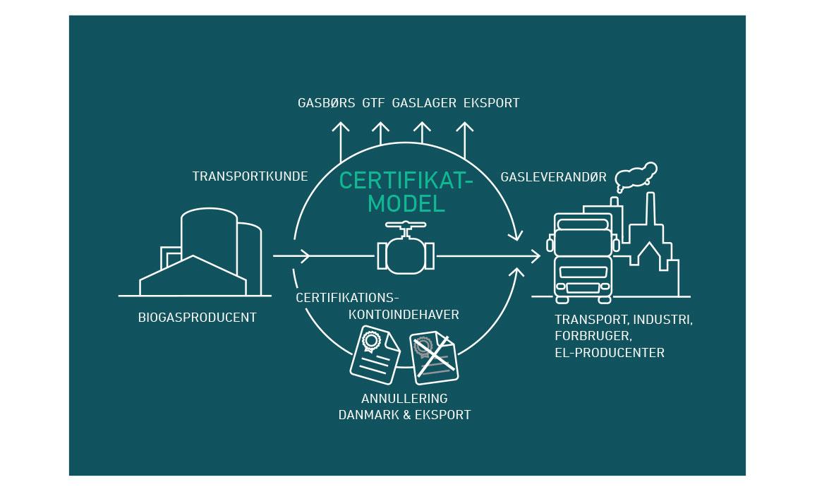 Energinet-kotra-udgangspunkt-model-lindakongerslev-grafisk-design